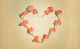 Claveles rosados en una forma del corazón Imagen de archivo