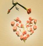 Claveles rosados en una forma del corazón Foto de archivo libre de regalías