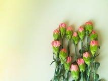 Claveles rosados en una forma del corazón Fotografía de archivo libre de regalías