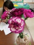 Claveles valerosos de las tarjetas del día de San Valentín fotografía de archivo