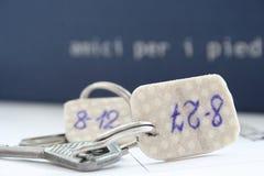 Claves Fotografía de archivo libre de regalías