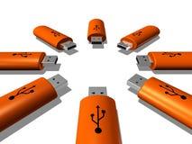 Claves del USB ilustración del vector