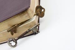 Claves dentro del libro de cuero Imagenes de archivo