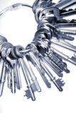 Claves en el anillo Imagenes de archivo