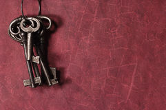 Claves esqueléticos Imagen de archivo libre de regalías