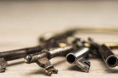 Claves esqueléticos antiguos Imágenes de archivo libres de regalías