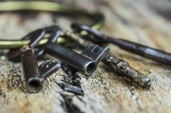 Claves esqueléticos antiguos Foto de archivo