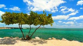 Claves hermosos de la Florida Fotos de archivo