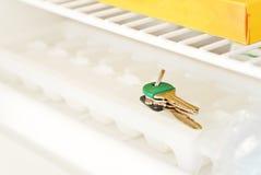 Claves perdidos en el congelador Imagen de archivo