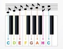 Claves y notas del piano del vector Imagenes de archivo