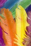 Clavette Images libres de droits