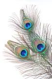 Clavette Image stock