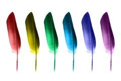 Clavette colorée photographie stock