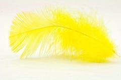 Clavette jaune Photos stock