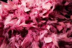 Clavette rose Photos libres de droits