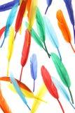 clavettes colorées Image libre de droits
