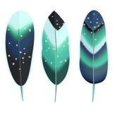 Clavettes d'oiseau colorées Photos libres de droits