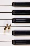 Clavier de piano et anneaux de mariage Photo libre de droits