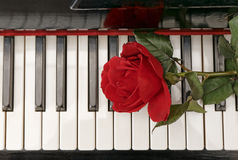 Clavier de piano et rose de rouge Photographie stock libre de droits