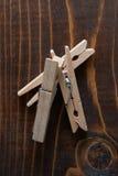 Clavija del paño Imagen de archivo libre de regalías