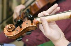Clavijas del violín Foto de archivo