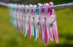 Clavijas que se lavan Imagen de archivo libre de regalías