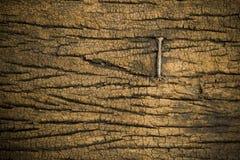 Clavo en la madera Fotografía de archivo