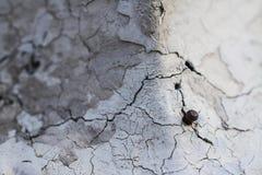 Clavo y grieta en la pared Foto de archivo libre de regalías