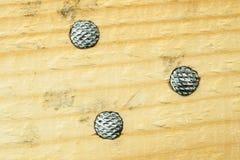 Clavos. Cabezas en madera. Visión superior Foto de archivo libre de regalías