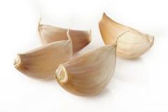 Clavos del ajo en blanco Fotografía de archivo