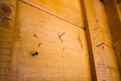 Clavos en el tablero Foto de archivo