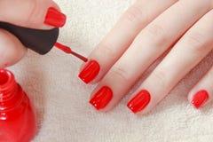 Clavos manicured hermosos del ` s de la mujer con el esmalte de uñas rojo en la toalla blanca suave Fotos de archivo libres de regalías