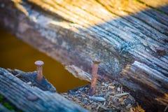 Clavos oxidados viejos Imagen de archivo libre de regalías