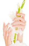 Clavos y dedos hermosos Fotografía de archivo libre de regalías