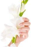 Clavos y dedos hermosos Imagen de archivo libre de regalías