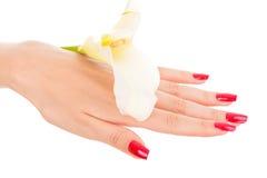 Clavos y dedos hermosos con la flor Imagen de archivo