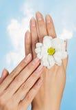 Clavos y dedos hermosos de la mujer imagen de archivo libre de regalías