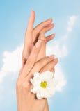 Clavos y dedos hermosos de la mujer Fotos de archivo