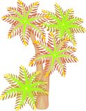 Clavularia korall Arkivfoto