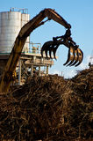 Claw. A tractor with a lifting claw attachment over a huge pile of sugar cane royalty free stock image