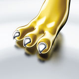 Claw gold Stock Photo