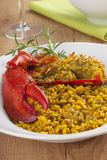 Clawed Lobster with yellow rice Stock Photos