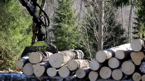 Claws of the log forwarder slowly closing in to pick up four small logs Royalty Free Stock Image