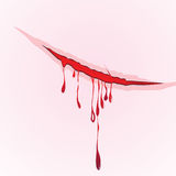 Claws scratch blood drops background. damage illustration. Stock Image