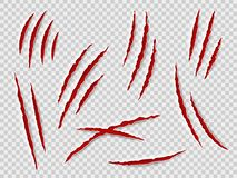 Free Claws Scratches. Animal Claw Tracks, Cat Or Tiger, Bear Or Lion Attack Nails Scratches. Thriller Horror, Halloween Royalty Free Stock Images - 153260349