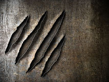 Claws scratches marks on rusty metal plate Stock Images