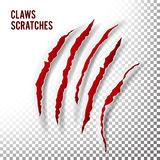 Claws Scratches Vector. Claw Scratch Mark. Bear Or Tiger Paw Claw Scratch Bloody. Shredded Paper Stock Photos