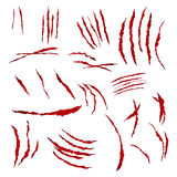 Claws Scratches Vector. Isolated On White Background. Bear Or Tiger Paw Claw Scratch Bloody. Shredded Paper Royalty Free Stock Photography
