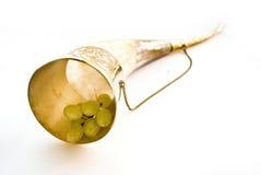 Claxon y uva Imagen de archivo libre de regalías