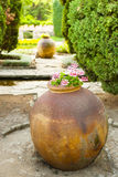 Clay amphora standing in the garden. Royalty Free Stock Photography